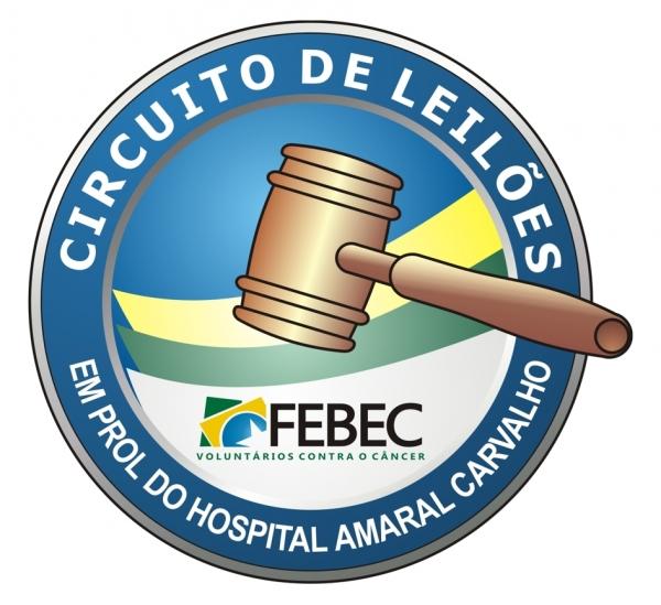 Leilão e show de prêmios em Arealva arrecada verba ao Hospital Amaral Carvalho